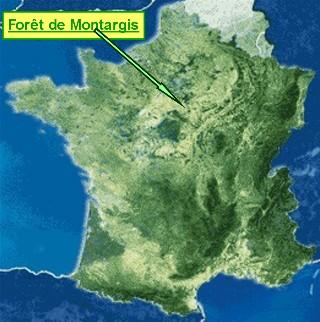 Carte de France sur laquelle on distingue nettement le massif compact de la Forêt de Montargis