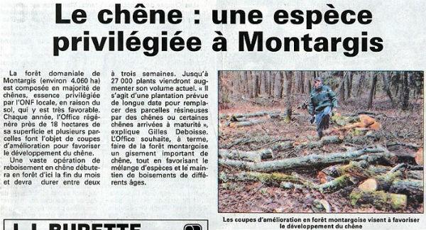 Reboisement en chêne de la Forêt de Montargis. Article publié par l'Eclaireur-du-Gâtianais le 18 Février 2010