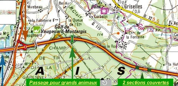 L`autoroute A19 dans la traversée de la Forêt de Montargis