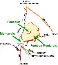 La Forêt de Montargis - plan schématique - au centre le village de Paucourt