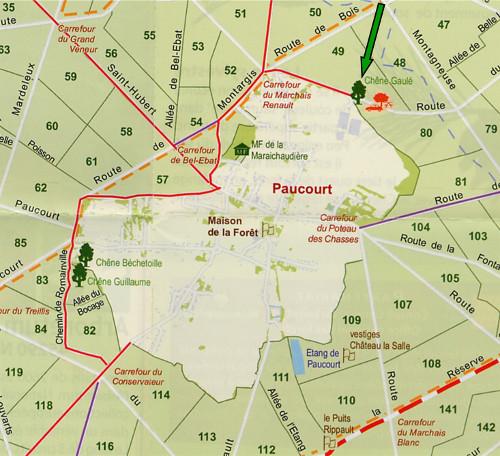 Extrait de la nouvelle carte-guide de la Forêt de Montargis. La flèche verte pointe vers le site de la Fête de la Forêt