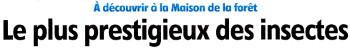 Cliquez ICI et visualisez l'article publié par l'Eclaireur-du-Gâtinais dans son édition du 24.08.2016