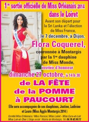 Encart publicitaire publié par le Comité Miss France Miss Orléanais dans l'Eclaireur-du-Gâtinais du 24.10.2013.