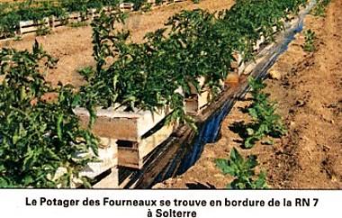Gaëlle Plancheron, gérante du Potager des Fourneaux, à Solterre. Cliquez pour visualiser l'article.