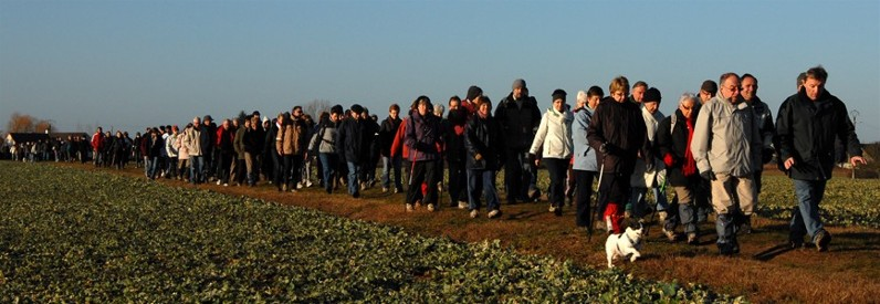 La longue colonne des marcheurs sur les chemins de la Clairière de Paucourt avant de pénétrer dans notre belle forêt. Photo François Chièze. Cliquez pour lancer le diaporama.