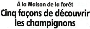Cliquez ICI pour prendre connaissance de l'article publié dans l'Eclaireur-du-Gâtinais du 27.09.2012 présentant le programme du week-end champignons.